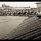 Charles Bridge - Prague by Tim Topping