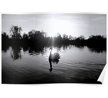 Crystal Swan (2) Poster