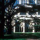Salisbury Cathedral, through the cedars to the cloister by nealbarnett