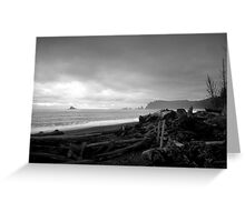 Morning on the beach - Olympic NP Greeting Card