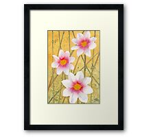 Three White Flowers Framed Print