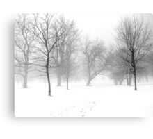Snow, Fog and Trees Canvas Print