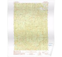 USGS Topo Map Oregon Old Blue 280968 1990 24000 Poster