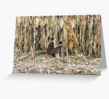 In the Corn Greeting Card