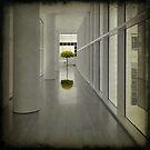 Leafy... by Julian Escardo