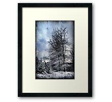 Winter's Day Framed Print