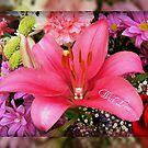 Happy Valentine's Day by AnnDixon