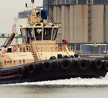 Tug Boat Of Newcastle by sallydexter