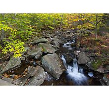 Hell Hollow Brook Photographic Print