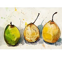 Three Pears Photographic Print