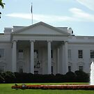 The White House - Washington, DC by AlyB9