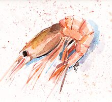 Shrimp by Aleksandra Kabakova