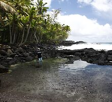 Kalapana by the sea by Lee Gunderson