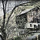 McConnells Mill by Monnie Ryan