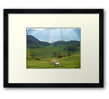 Jingle Cows Framed Print