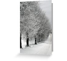 Trees line  in winter pathway from old farm Greeting Card