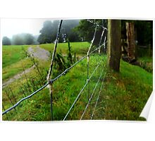 wool on a wire fence Poster