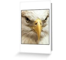 Eagle Closeup Greeting Card