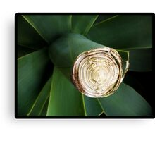 The Great Green Grow Canvas Print