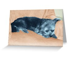 A Dog's Life,  in color Greeting Card