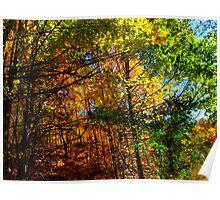 Leaf Whimsy Poster