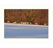 Lakeland Winter Scene Art Print
