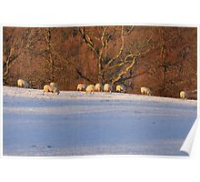Lakeland Winter Scene Poster