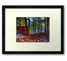 Autumn Ravine  Framed Print