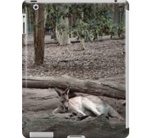 Excellent camouflage iPad Case/Skin