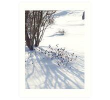 Lovely Winter Pattern, 2011 Art Print