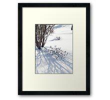 Lovely Winter Pattern, 2011 Framed Print