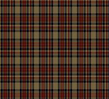 00268 U.S. Customs & Border Protection Tartan  by Detnecs2013