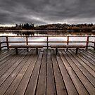 Swan Lake by Anne McKinnell
