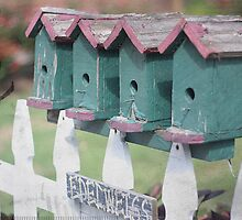 picket fence with birdhouses by Maureen Nichols