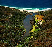 Newcastle Estuary by sallydexter