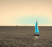 Tranquility by Igor Shrayer