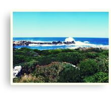 Landscape in South Africa Canvas Print