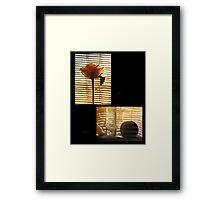 Rose and peach Framed Print