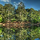 Reflections Of Marysville - Marysville, Victoria Australia - The HDR Experience by Philip Johnson