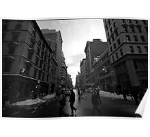 5th & 22nd, nyc, 27-jan-2011 Poster