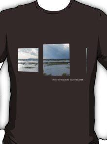 window blue T-Shirt