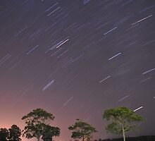 Star Trails by Conor  O'Neill