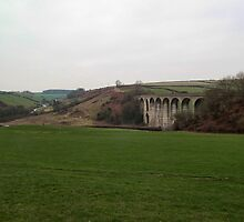 Uplyme Cannington Viaduct by lynn carter
