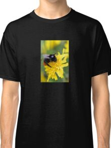 The red tailed bumble Classic T-Shirt