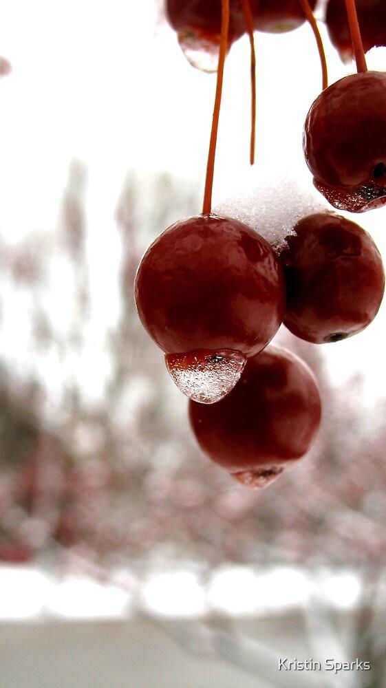 SnowBerry by Kristin Sparks