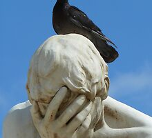 Fu......pigeon, he sh.......on my face ! by supergold