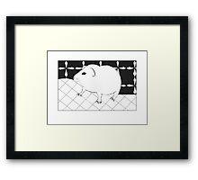 Adorable guinea pig Framed Print