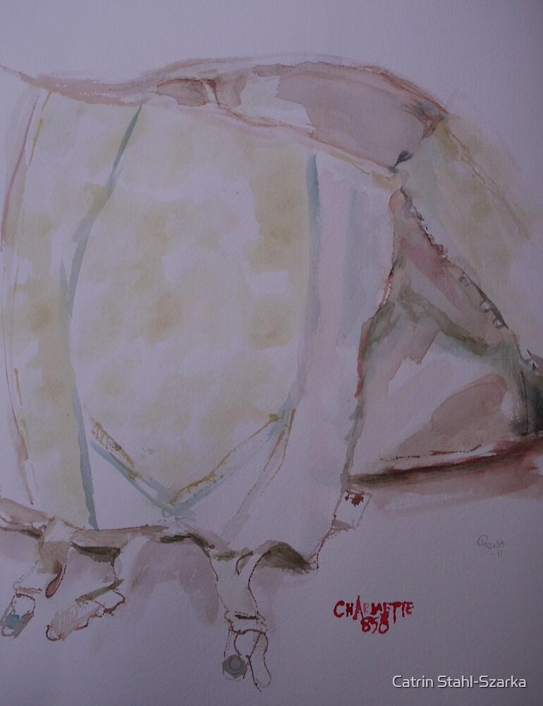 Charmette 858 by Catrin Stahl-Szarka