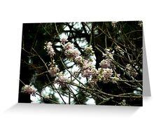 Somber-Looking Flowers Greeting Card