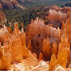 Thor's Hammer at Bryce Canyon, Utah by Alex Cassels